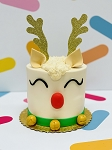 Reindeer DIY Cake Kit