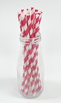 Hot Pink Stripe Paper Straws